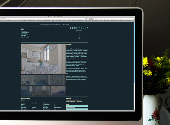 Blustella Rentals. Website & Identity By El Studio